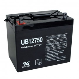 Quickie BAT24 GP 24 AGM 12 Volt, 75 Ah Replacement Battery