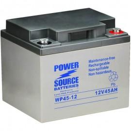 WP45-12 Sealed AGM Battery 12 volt 45 ah Power Source