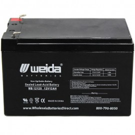 WB12120 F1 Sealed AGM Battery 12 volt 12 ah Weida .187 term