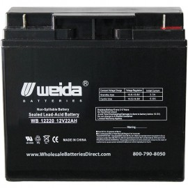 WB12220 NB nut-bolt Terminals Sealed AGM  Battery 12 volt 22ah Weida
