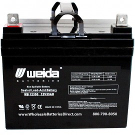 WB12350 NB U1 Sealed AGM Battery 12 volt 35 ah Weida