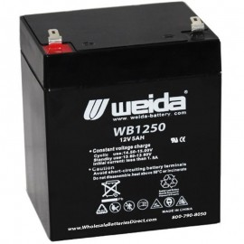 WB1250 F2 Sealed AGM Battery 12v 5 ah Weida F2 .250 terminals