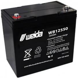 WB12550 IT SLA AGM 22NF 12 volt 55 ah Internal Threads Weida Battery