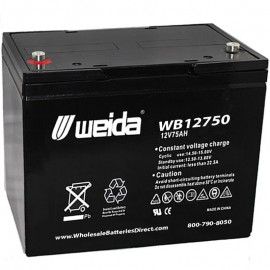 WB12750 IT SLA AGM Grp 24 12v 75ah Internal Threads Weida Battery