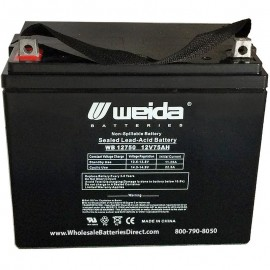 WB12750 Sealed AGM Group 24 Battery 12 volt 75 ah Weida z-post