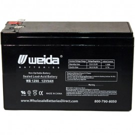 WB1290 F2 Sealed AGM Battery 12 volt 9 ah Weida .250 terminals