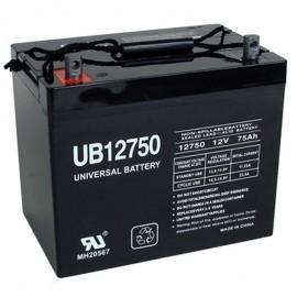 12 Volt 75 ah Fire Alarm Battery replaces Power-Sonic PS-12750