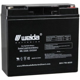 WB12220 IT Insert Terminals Sealed AGM 12 volt 22 ah Weida Battery