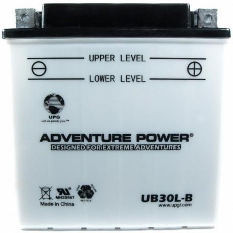 Arctic Cat 0445-081 Conventional ATV Quad Replacement Battery
