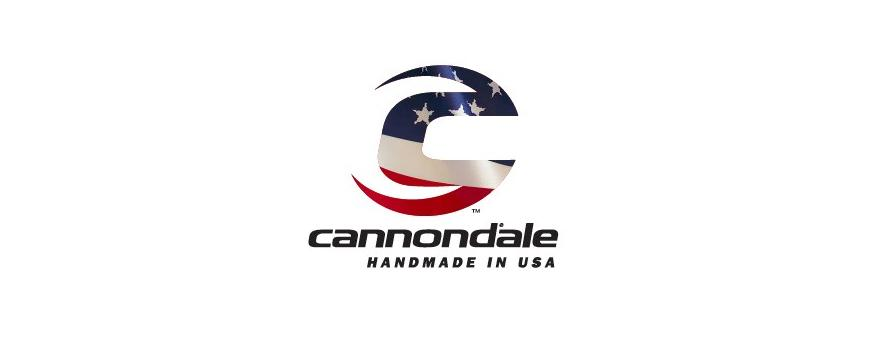 Cannondale ATV Batteries