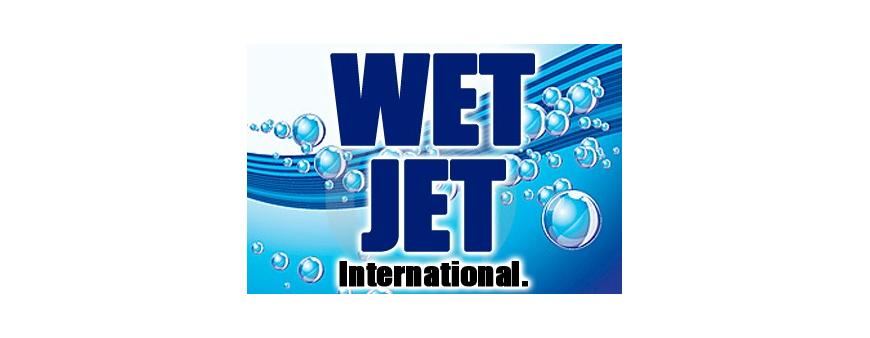 Wet Jet International Jet Ski Batteries