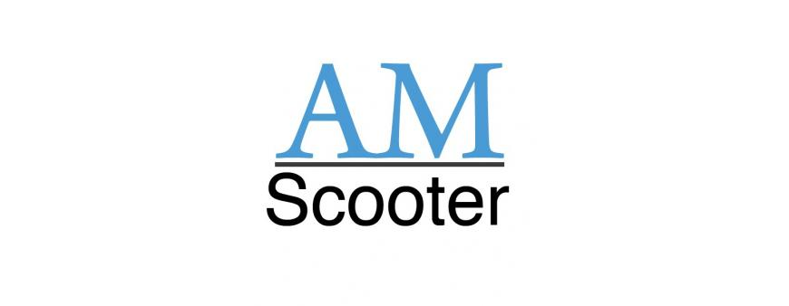 AM Scooters Batteries