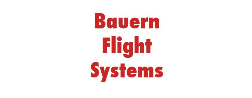 Bauern Flight Systems Batteries