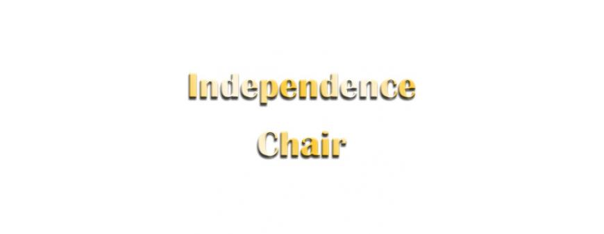 Independence Chair Batteries