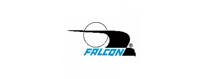 Falcon Electric UPS Batteries