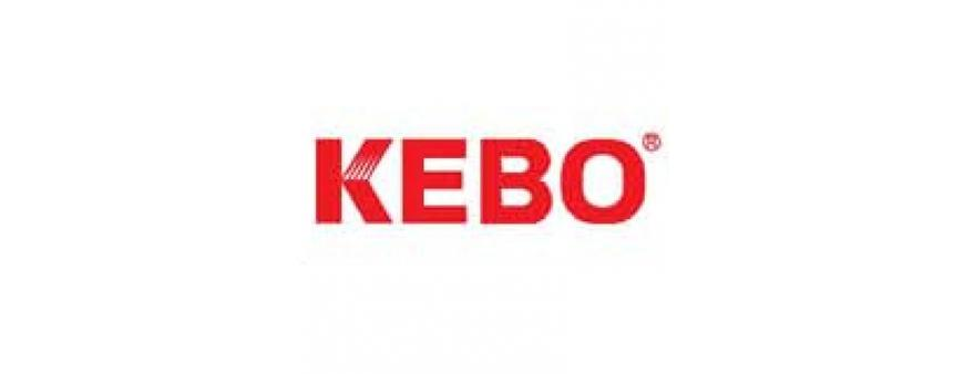 Kebo UPS Batteries