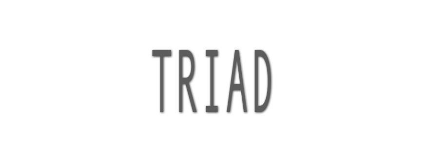 Triad UPS Batteries
