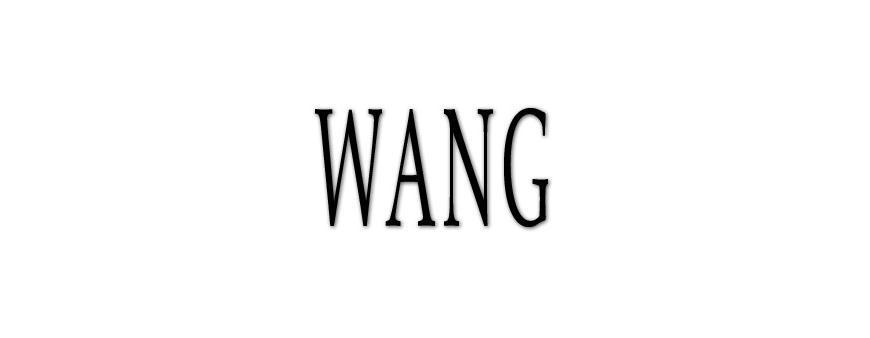 Wang UPS Batteries