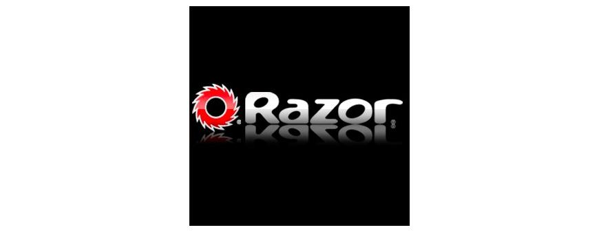 Razor Scooter Batteries