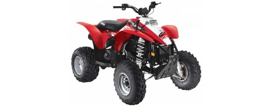 Polaris Trail Blazer ATV Batteries