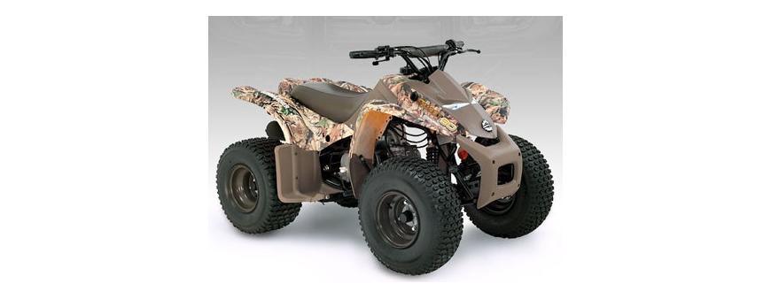Can-Am BRP Quest ATV Batteries