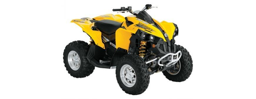 Can-Am BRP Rally and Renegade ATV Batteries