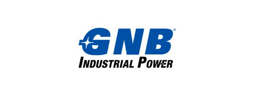 GNB Sprinter UPS Backup Batteries