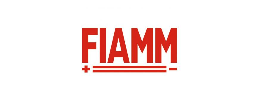Fiamm Sealed AGM Batteries